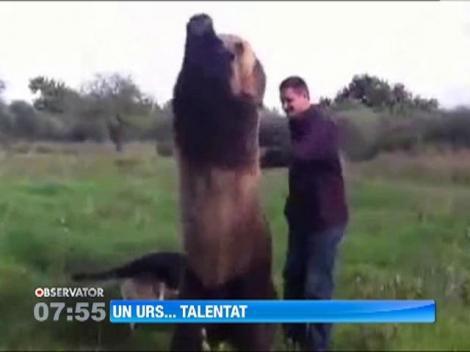 Un urs din Rusia face senzatie cu trucurile sale
