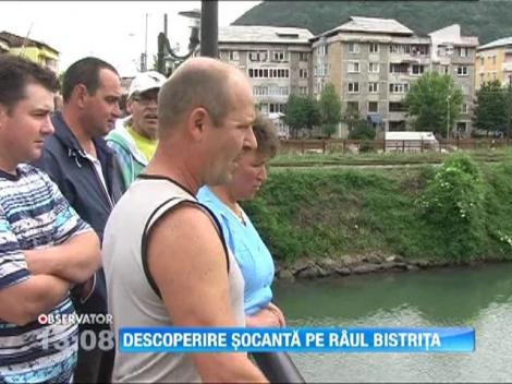 O tanara a fost gasita moarta pe raul Bistrita