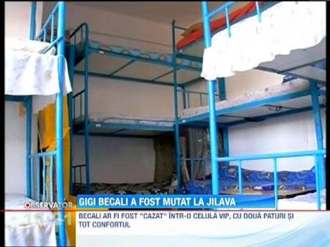 Gigi Becali a fost transferat de la Penitenciarul Rahova la cel din Jilava