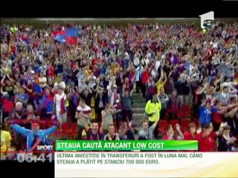 Steaua cauta atacant low cost