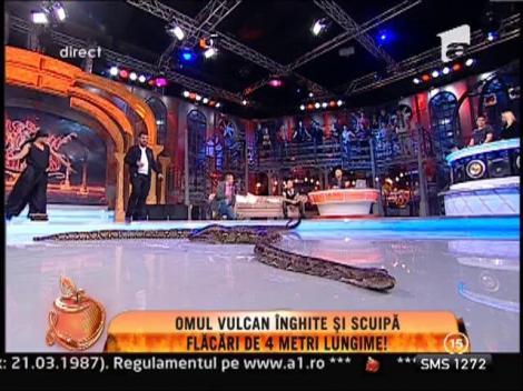 Serpi, tarantulele si crocodili, in platoul de la Un Show Pacatos