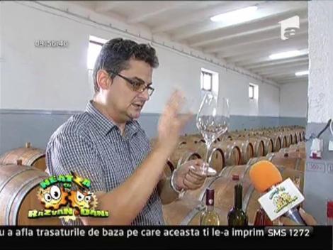 Etapele degustarii vinului
