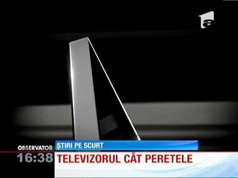 Televizorul cu diagonala de 3 metri