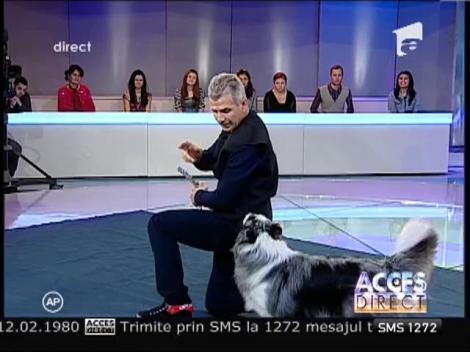 Bruno Icobet, magicianul câinilor