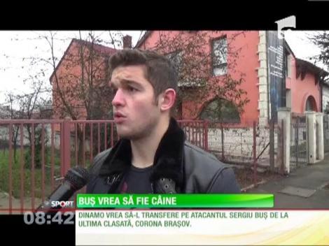 Dinamo îl vrea pe Sergiu Buş de la Corona Braşov