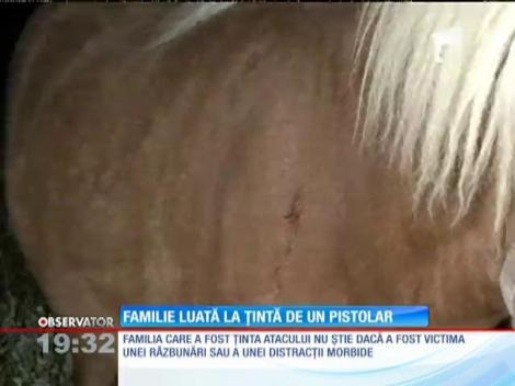 O familie din Timiș a fost luată la țintă de un individ înarmat