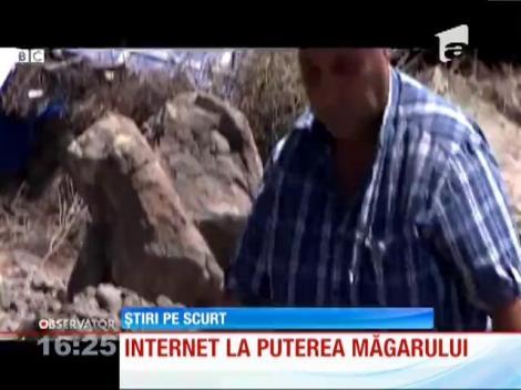 În Izmir, Turcia, internetul funcţionează la viteza măgarului