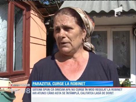 Revoltă într-un sat din Vrancea, după ce un parazit de 20 de centimetri a fost găsit în apa de la robinet!