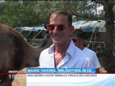 Radu Mazăre a ridicat în braţe un leu și a hrănit un pui de girafă