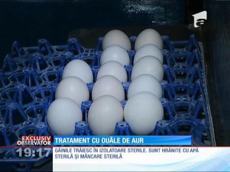 Tratament cu ouă care provin de la găini vaccinate