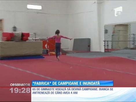 """""""Fabrica"""" de campioane la gimnastică din Ploieşti, inundată"""
