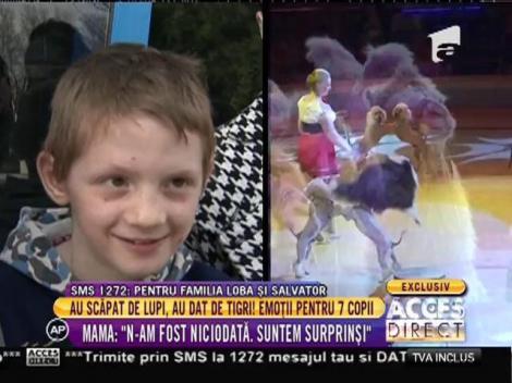 Emoții pentru cei șapte copii când au văzut tigrii la circul Globus