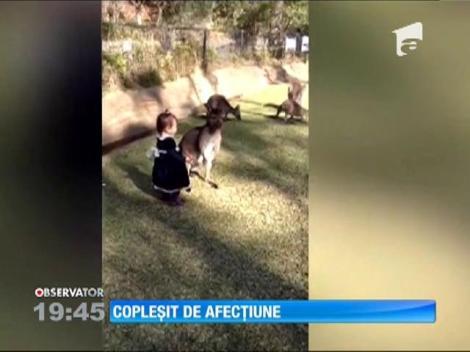 O prietenie neobişnuită între o fetiţă şi un pui de cangur