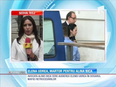 Elena Udrea, martor pentru Alina Bica