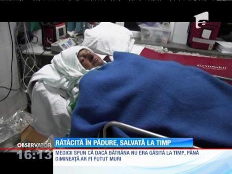 O bătrână din judeţul Cluj era să moară după ce a plecat la cules de ciuperci