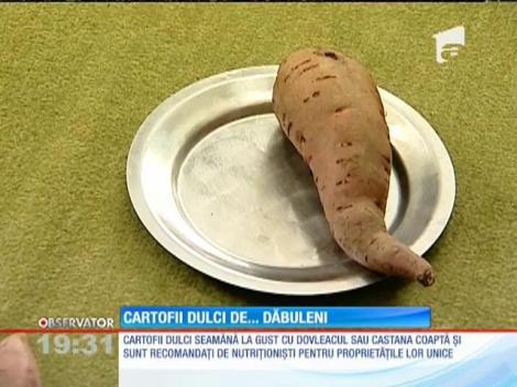 Cartofii dulci ar putea înlocui celebrii pepeni de Dăbuleni