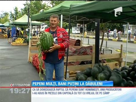 Pepenii de Dăbuleni au invadat pieţele, producătorii nu se bucură!