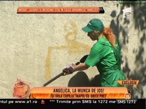 Angelica Constantin, la munca de jos!