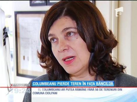 Irinel Columbeanu pierde teren în lupta cu creditorii