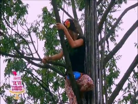 """""""Fire-ați ale dracu de maimuțe""""! Fetele se suie în copac, dar nea Mărin pune bâta pe ele!"""