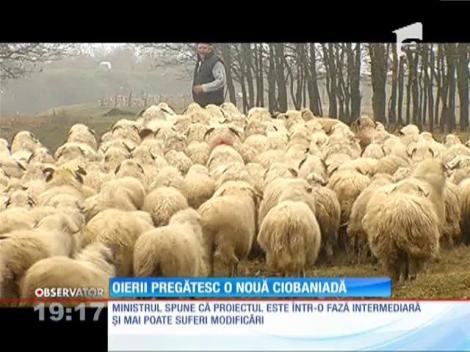 Ciobanii sunt pregătiţi să se adune, din nou, în faţa Palatului Parlamentului