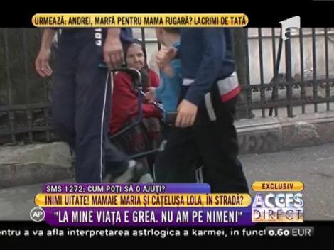 Mamaie Maria și cățelușa Lola, riscă să ajungă în stradă?