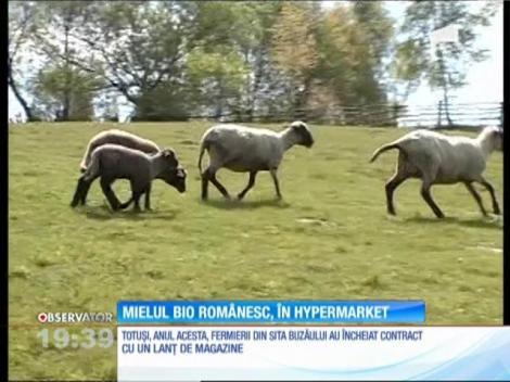 Mielul BIO românesc, în hypermarket