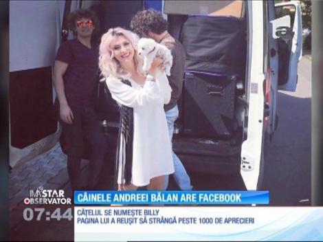 """Bucurie mare! Un nou membru al familiei Andreei Bălan are cont pe Facebook: """"Trebuie să-l urmăriți!"""", le-a spus vedeta fanilor"""