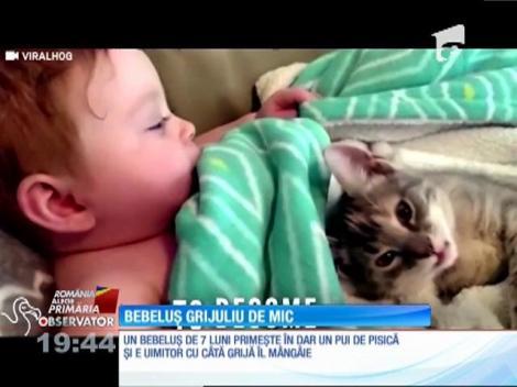 Bebeluşul grijuliu cu pisica lui