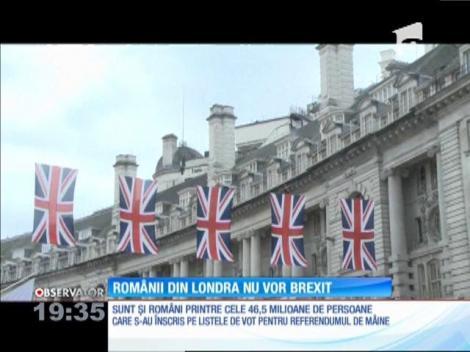 Românii din Londra nu vor să iasă din Uniunea Europeană