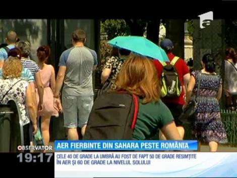 Aer fierbinte din Sahara peste România. Au fost 40 °C la umbră şi 60 °C la nivelul solului, la soare