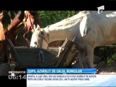 Un copil de 11 din Brăila a fost rănit grav de un cal