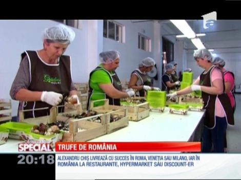 Special! Trufele cultivate la Oradea ajung în numai 24 de ore de la cules, în farfuriile din restaurante