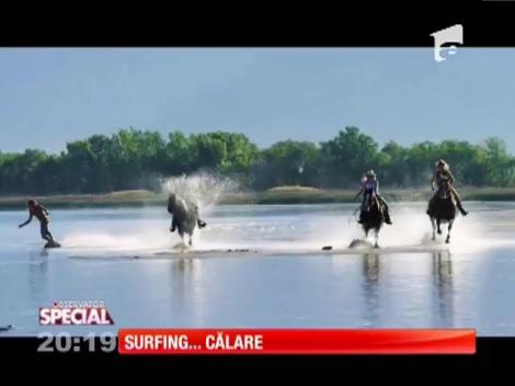 Special! Surfing cu ajutorul unui cal!
