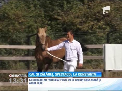 Cal și călăreț, spectacol la Cupa Equestria