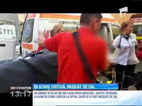 Un bărbat de 60 de ani din judeţul Botoşani a rămas fără o mână după ce a fost muşcat de un cal