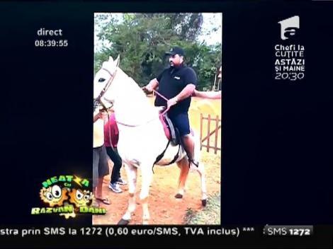 Smiley News: Este atât de gras încât nici măcar un cal nu poate să îl susţină!