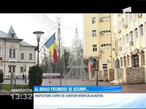 Primăria Târgu-Jiu a plătit 100.000 de euro pentru un brad de Crăciun!