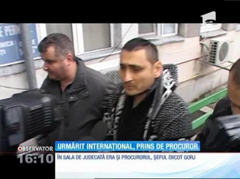 Un procuror din Târgu-Jiu a prins un individ dat în urmărire internaţională, căutat de autorităţi de 11 luni