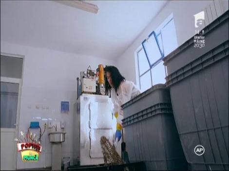 """Vedetele lui Nea' Mărin puse să curățe pește. Margherita: """"Când am intrat în acea încăpere, am zis că mor!"""""""