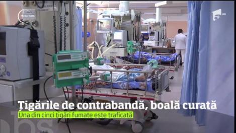 Ţigările de contrabandă, boală curată