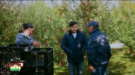 Nea Mărin duce vedetele la cules de mere