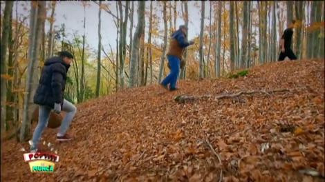 """La cules de ciuperci. """"Sigur n-am greșit pădurea!"""""""