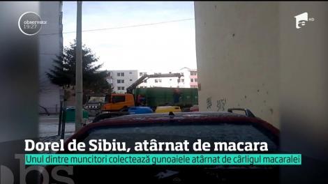 Gunoiul este ridicat cu tot cu gunoier, în Sibiu