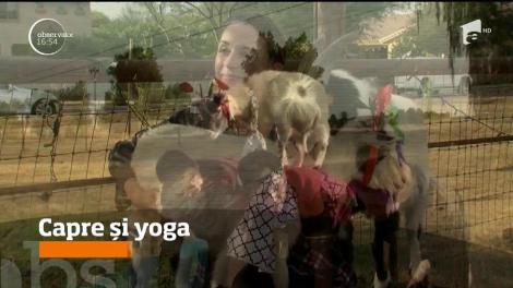O instructoare din SUA a inventat yoga cu capre