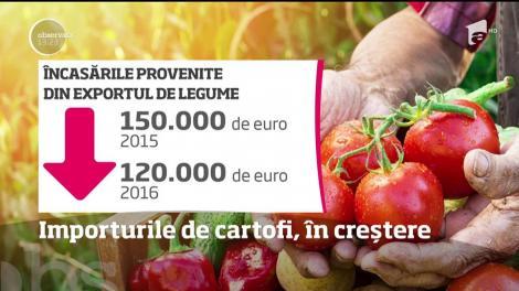 Romania se află pe locul patru în Europa la consumul de cartofi