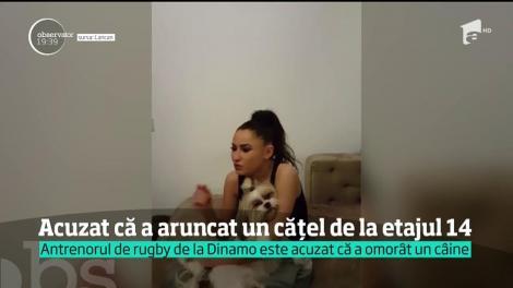 """Antrenorul de rugby al """"câinilor"""" de la Dinamo, acuzat că a aruncat un cățel de la etajul 14. """"Bubico"""", în 2017? Sfâșietor!"""