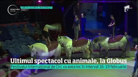 Ultimul spectacol cu animale, la circul Globus
