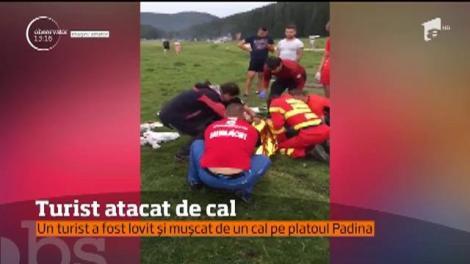 Salvamontiştii au intervenit la un accident mai puţin obişnuit, pe platoul Padina, din munţii Bucegi
