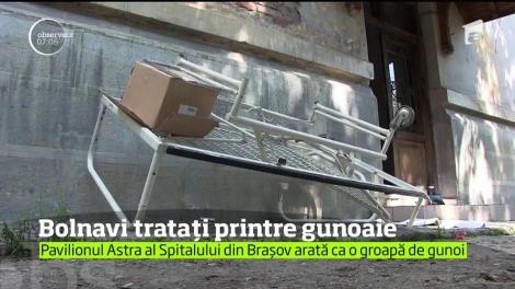 Imagini șocante! Seringi, pansamente folosite, paturi ruginite și animale, asta găsesc pacienții în Spitalul Județean din Brașov